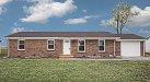 Photo of 1196 Mary Irene Road, New Baden, IL 62265 (MLS # 20024425)