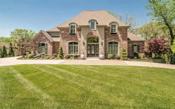 Photo of 715 North Spoede Road, Creve Coeur, MO 63141-7746 (MLS # 20029280)