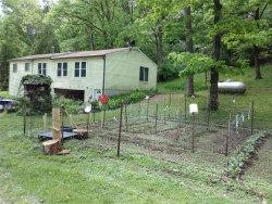Photo of 5431 Katrina Drive, House Springs, MO 63051-2454 (MLS # 20032275)
