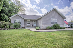 Photo of 2610 Vandalia Street, Collinsville, IL 62234 (MLS # 20033045)