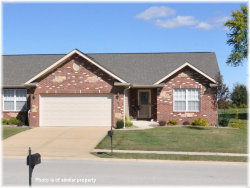 Photo of 7080 Remington Villa Drive, Maryville, IL 62062-6206 (MLS # 20033227)