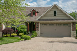 Photo of 311 Torrey Pines Circle, Washington, MO 63090 (MLS # 20033591)
