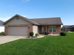 Photo of 9924 Holy Cross, Breese, IL 62230-3604 (MLS # 20034415)