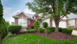 Photo of 16649 Equestrian Lane, Chesterfield, MO 63005-4881 (MLS # 20034561)