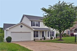 Photo of 437 Bethany Court, Valley Park, MO 63088-2307 (MLS # 20034587)