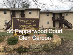Photo of 56 Pepperwood Court, Glen Carbon, IL 62034 (MLS # 20035724)