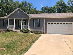 Photo of 9410 Swanee Drive, Hillsboro, MO 63050-5308 (MLS # 20044483)