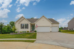 Photo of 4729 Rockville Court, Imperial, MO 63052-1349 (MLS # 20045549)