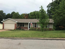 Photo of 5178 Winter Haven Court, Imperial, MO 63052 (MLS # 20045589)