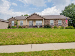 Photo of 1602 Spring Mill, Wentzville, MO 63385-3036 (MLS # 20045611)