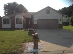 Photo of 97 Wendler Drive, Collinsville, IL 62234-1488 (MLS # 20047011)