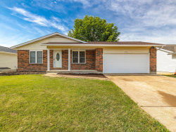 Photo of 3136 Lupine Drive, Arnold, MO 63010-5802 (MLS # 20047550)