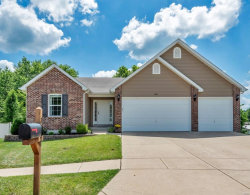 Photo of 3851 Mystic Valley Drive, Imperial, MO 63052-3627 (MLS # 20047662)