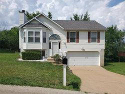 Photo of 7668 Meadowbrook Lane, Barnhart, MO 63012-2605 (MLS # 20048634)
