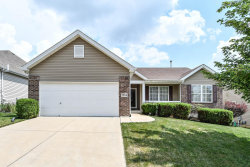 Photo of 7904 Silver Pine Drive, St Louis, MO 63129-2557 (MLS # 20048827)