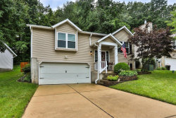 Photo of 961 Wynstay Circle, Valley Park, MO 63088-1445 (MLS # 20049079)