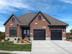 Photo of 6301 East Park Row, Maryville, IL 62062 (MLS # 20051256)