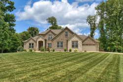 Photo of 413 Tyler Drive, Troy, IL 62294 (MLS # 20051612)