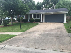 Photo of 12769 San Clemente Drive, Bridgeton, MO 63044 (MLS # 20053319)
