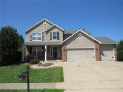 Photo of 3405 Manassas Drive, Edwardsville, IL 62025-3208 (MLS # 20057162)