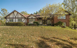 Photo of 2302 Clifton Forge Drive, Town and Country, MO 63131-3120 (MLS # 20059562)