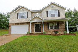 Photo of 1000 Balsawood, High Ridge, MO 63049 (MLS # 20063008)