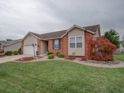 Photo of 7004 Stallion Drive, Edwardsville, IL 62025-3014 (MLS # 20063758)