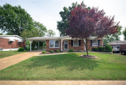 Photo of 10238 Mullally, St Louis, MO 63123-7322 (MLS # 20063817)