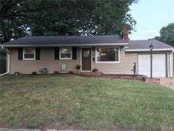 Photo of 2912 Dogwood, Granite City, IL 62040 (MLS # 20066186)