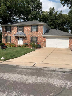 Photo of 12355 Country Glen Lane, Creve Coeur, MO 63141-7438 (MLS # 20066885)