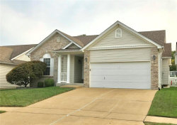Photo of 386 Winter Bluff Dr., Fenton, MO 63026-6599 (MLS # 20066966)