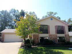 Photo of 7263 Emerald Forest, St Louis, MO 63129-5622 (MLS # 20069093)