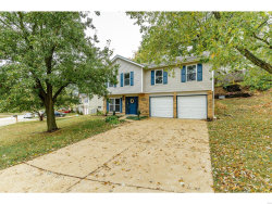 Photo of 2509 Belmont Drive, High Ridge, MO 63049-2421 (MLS # 20073290)