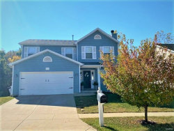Photo of 5724 Portsmouth, House Springs, MO 63051-1586 (MLS # 20074316)