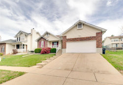 Photo of 6004 Westminster Ct, Imperial, MO 63052 (MLS # 20074383)