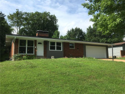 Photo of 10338 Richview Drive, Sunset Hills, MO 63127 (MLS # 20075658)