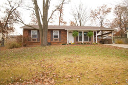 Photo of 808 Sommerset Drive, Troy, MO 63379 (MLS # 20080410)