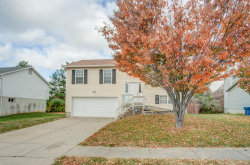 Photo of 149 Pine Hollow Lane, Collinsville, IL 62234-4784 (MLS # 20081493)