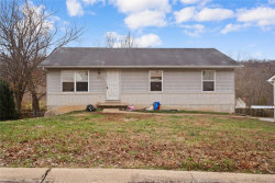 Photo of 3850 Birch Drive, Imperial, MO 63052-1177 (MLS # 20083853)