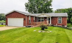 Photo of 875 Holiday Point Parkway, Edwardsville, IL 62025 (MLS # 21000181)