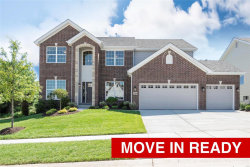 Photo of 16956 Pine Summit Drive, Chesterfield, MO 63005 (MLS # 21000677)