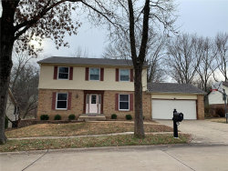 Photo of 15660 Summer Lake Drive Drive, Chesterfield, MO 63017 (MLS # 21002103)