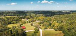 Photo of 22552 Restful Lane, Waynesville, MO 65583-3375 (MLS # 19075254)
