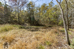 Photo of 0 Highway 17 South, Laquey, MO 65534 (MLS # 20075634)