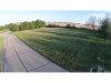 Photo of 5202 Live Oak Drive, Smithton, IL 62285-6228 (MLS # 17023811)