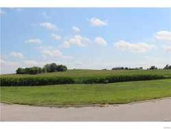 Photo of 135 S. Harvest Crest Drive, Highland, IL 62249 (MLS # 17058064)