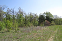 Photo of 0 Pike Lane, Lebanon, MO 65536 (MLS # 18029173)
