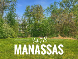 Photo of 3478 Manassas Drive, Edwardsville, IL 62025 (MLS # 20018866)