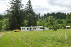 Photo of 437 Victor Point Rd NE, Silverton, OR 97381 (MLS # 709133)
