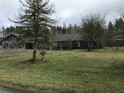 Photo of 14666 Mitchell St SE, Jefferson, OR 97352-9773 (MLS # 728109)